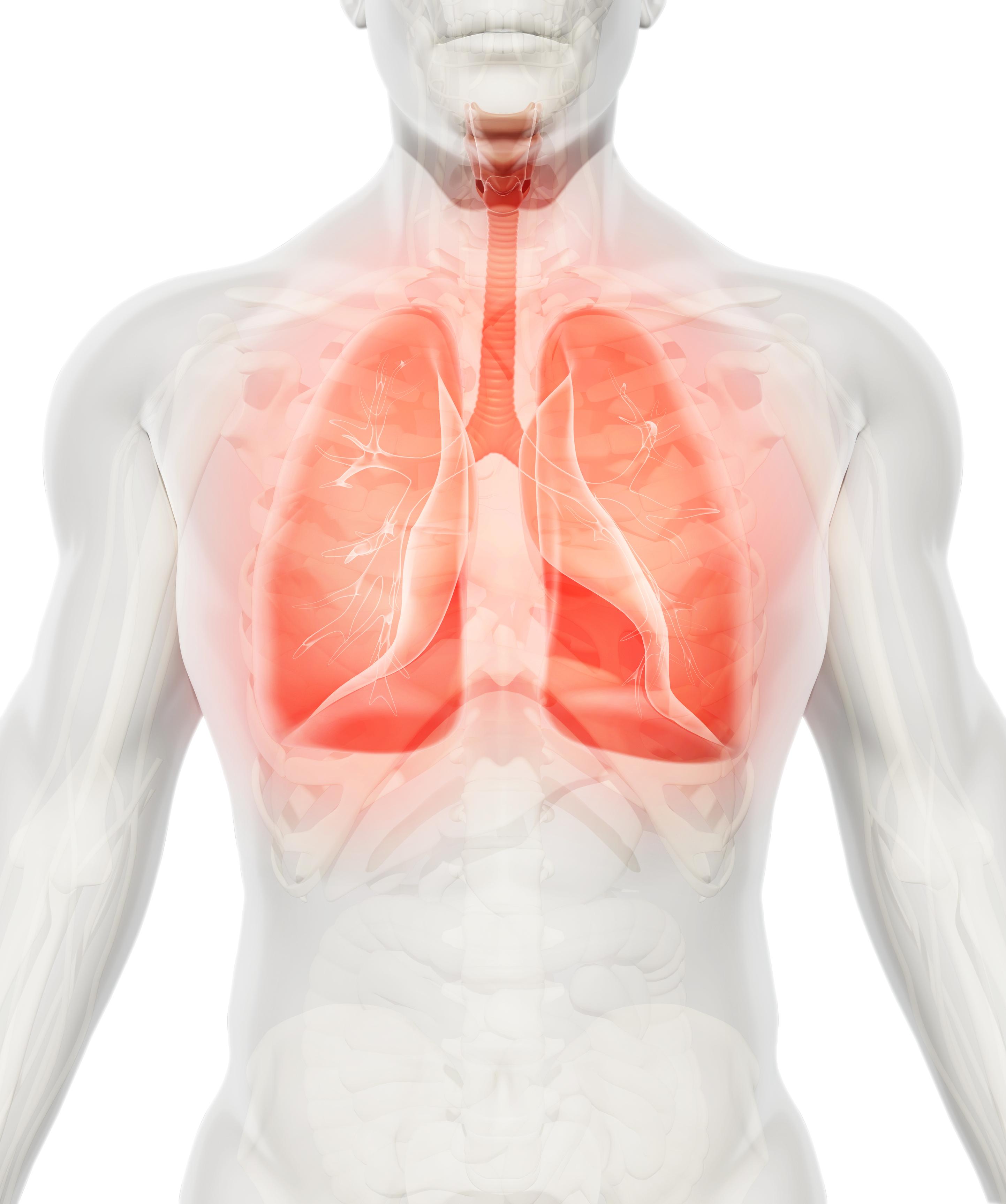 На четвърто място са хроничните заболявания на долните дихателни пътища. Рискът за смърт от тях е 1 към 28.