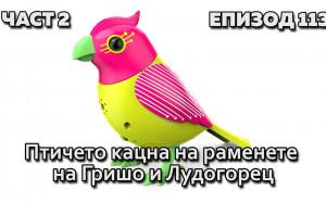 Птичето кацна на раменете на Гришо и Лудогорец