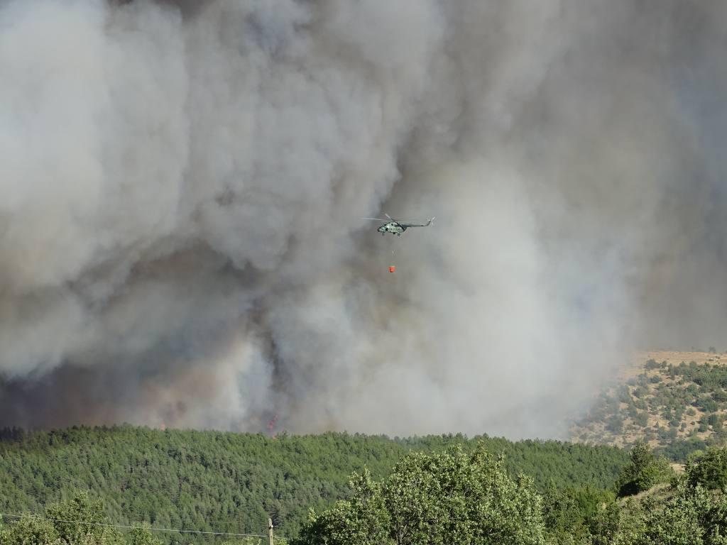 Резултат с изображение за кресна пожар