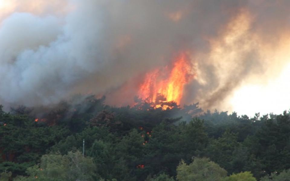 Пожар бушува в близост до стадион