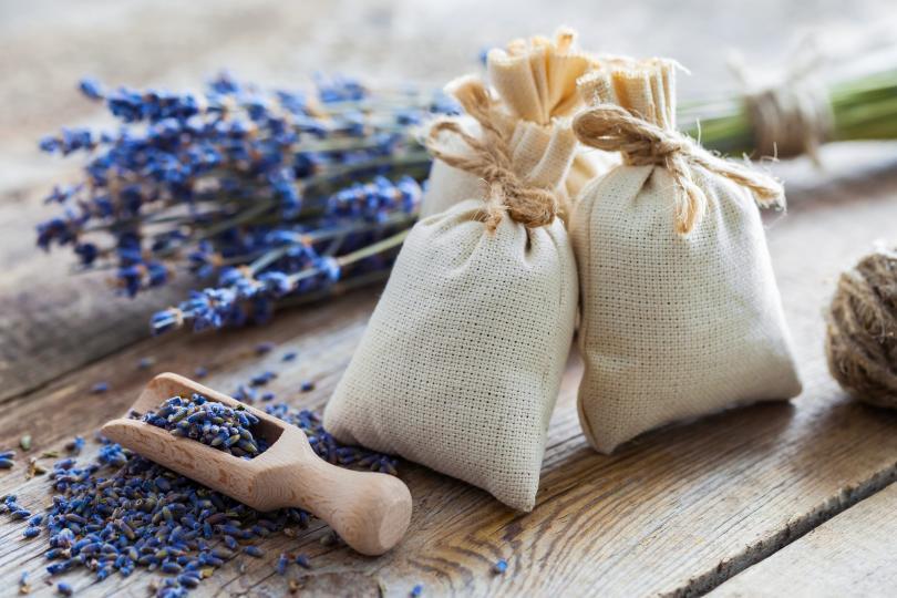 <p>Сложете торбички, пълни със сушена лавандула в гардероба и в шкафовете, където съхранявате какви ли не джунджурии. Подменяйте ги през 2-3 месеца. Така ще държите далеч от дрехите, храната и дома си всякакви неприятни и нежелани насекоми.</p>