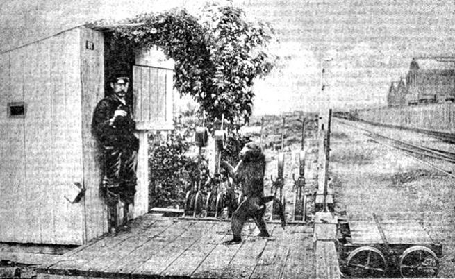 Историята на маймуната Джак, която 9 г. работи на жп гара