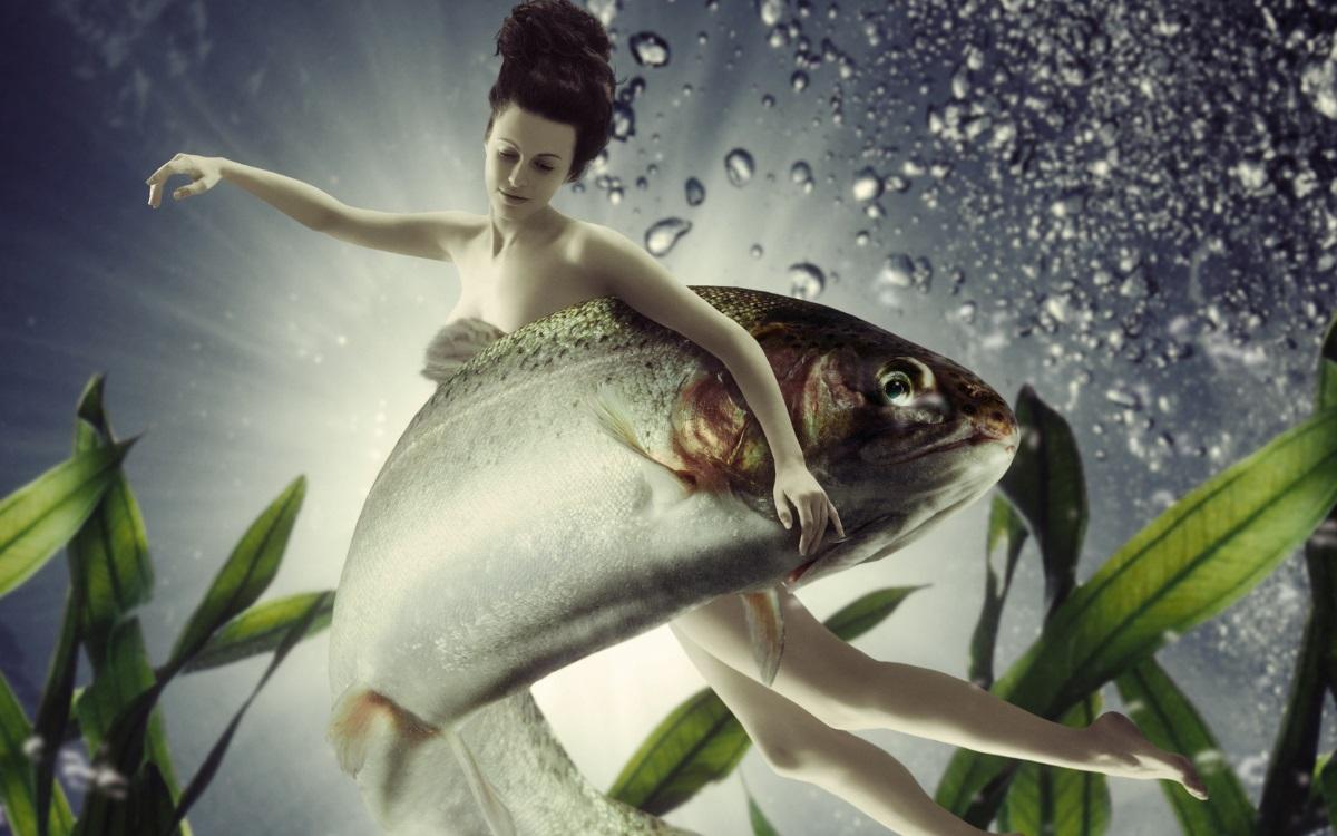 """Риби - """"Ще те обичам, докато... не ме накараш да се откажа от мечтите си!"""". Рибите са невероятно сензитивни, въпреки че изглеждат студени. Никога не спирайте да ги вдъхновявате Рибите и те ще бъдат винаги до вас."""