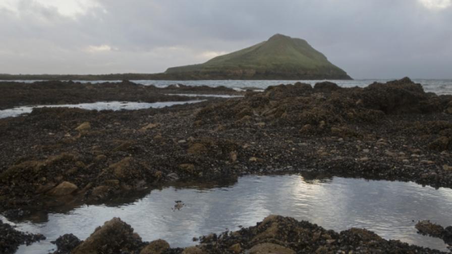 19 хил. долара годишно, за да живееш на самотен остров