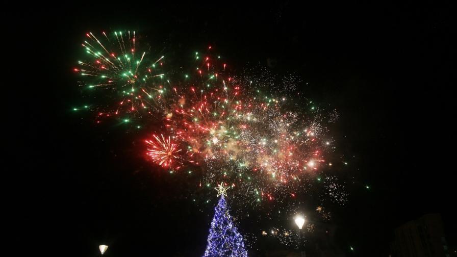 Коледната елха на София грейна