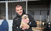 Берое се включи в кампания в подкрепа на животните<strong> източник: beroe.bg</strong>