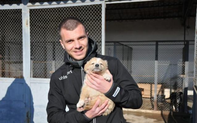 Берое се включи в кампания в подкрепа на животните