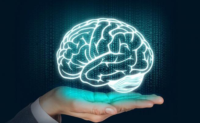 Има храни, които могат да спасят мозъчните ни клетки.