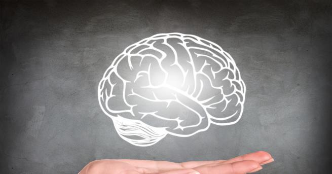Ако се тревожите, че паметта ви отслабва и трудно се