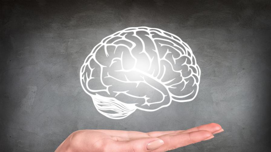 15 любопитни факта за човешкия мозък