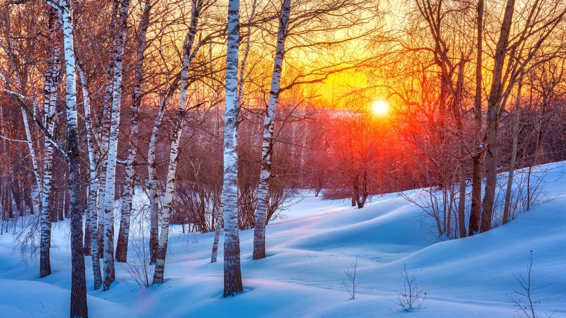 Седмичен хороскоп 15-21 януари: време е да ограничим външната си енергия
