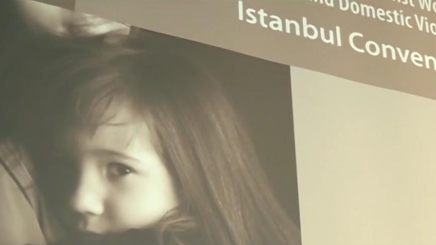 ГЕРБ отложи гласуването на Истанбулската конвенция