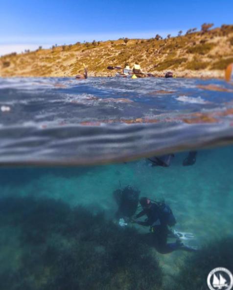 """Българинът Виктор Евтимов е ръководител на проект за създаване на изкуствен риф на остров Самос в Гърция. 22-годишният изследовател е възпитаник на Немската езикова гимназия """"Гьоте"""" в Бургас, а в момента е студент по биология в американския университет """"Дрексъл"""" в щата Филаделфия.  Първият успех на бургазлията е през 2017 г., когато той открива и изолира нов вирус, наречен """"Джералт"""" – бактериофаг в почвата."""
