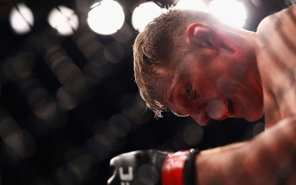 Волков нокаутира Фабрицио Вердум в UFC Лондон
