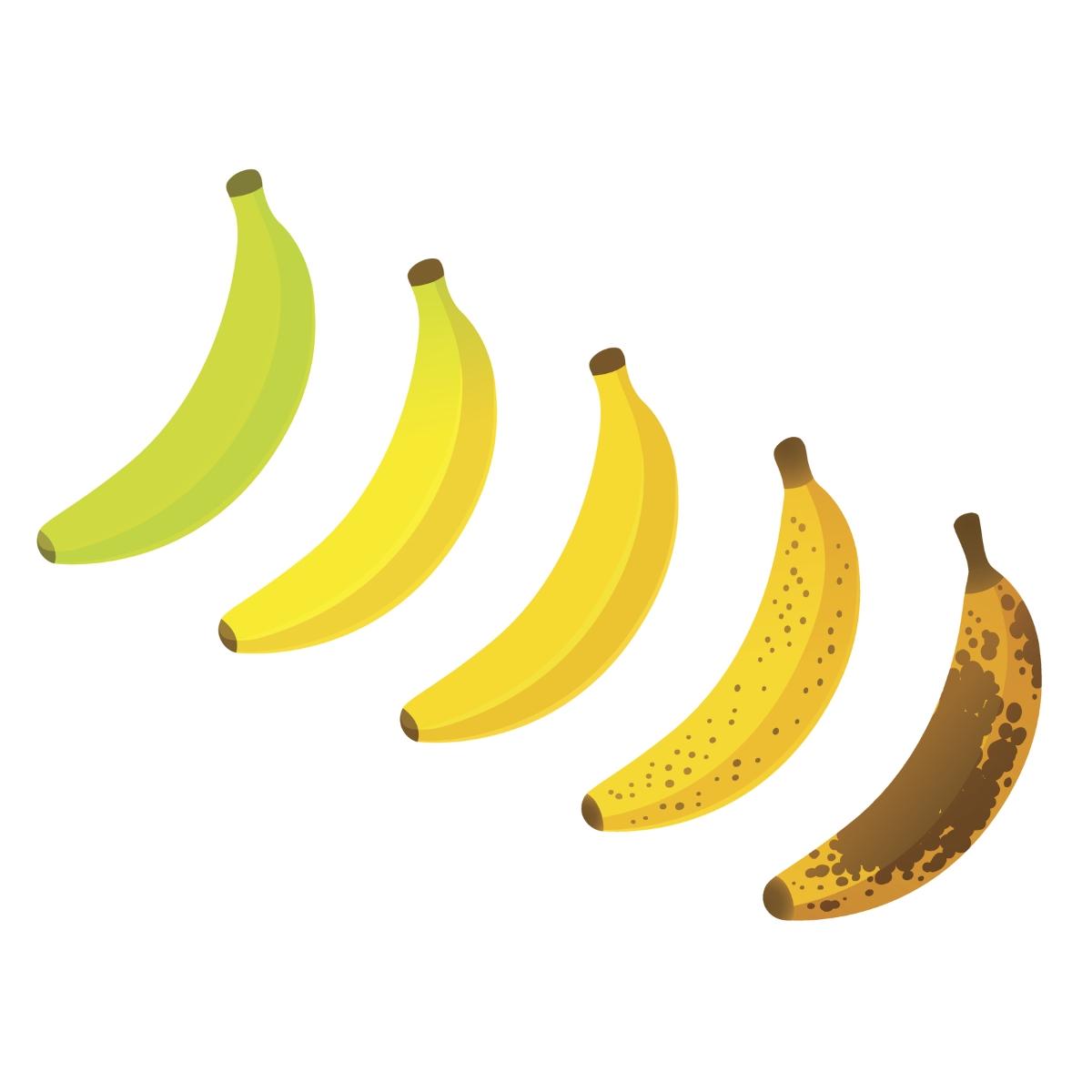 Бананите са богати на пектин, който извежда токсините от организма. Все пак, трябва да внимаваме с количеството и времето от денонощието, в което ги консумираме.