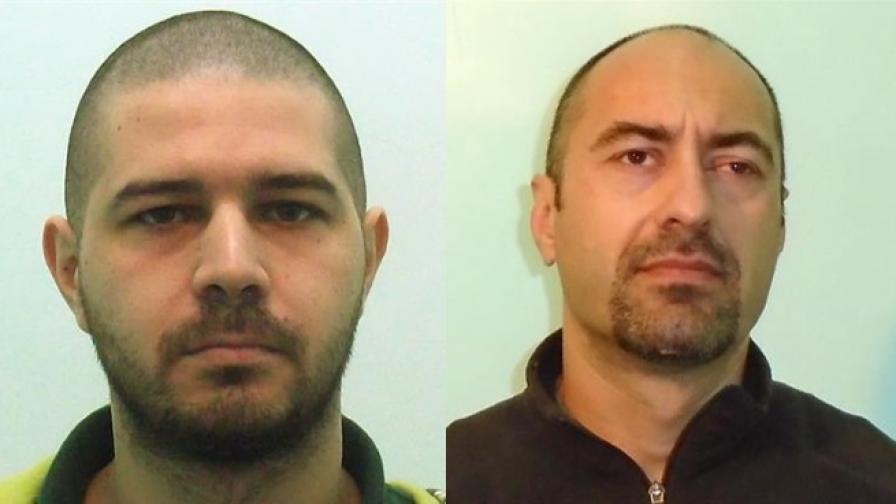 Радослав Колев и Владимир Пелов