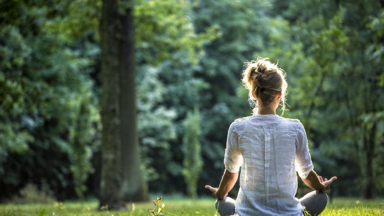 Липа за вечна любов, върба против тъга – вижте скритата сила на различните дървета