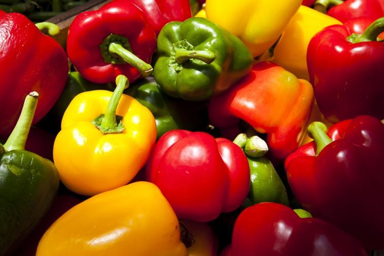 храни полезни организъм