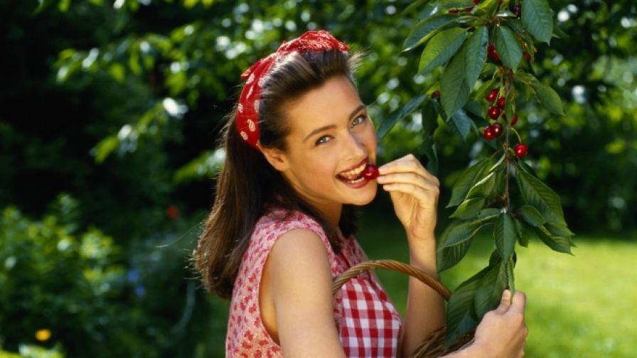 Черешовото дръвче може да бъде засадено от костилка.