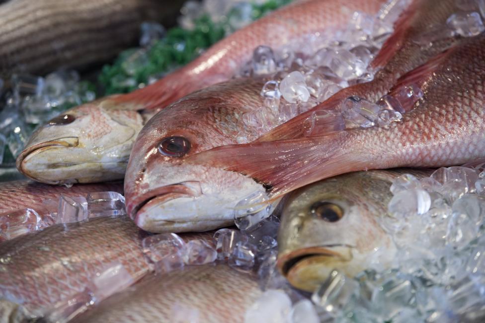 - Ципура. Енергия от 100 грама – около 100 калории. Месото на тази средиземноморска риба е богато на желязо, селен и витамини. Подходяща е за хора...