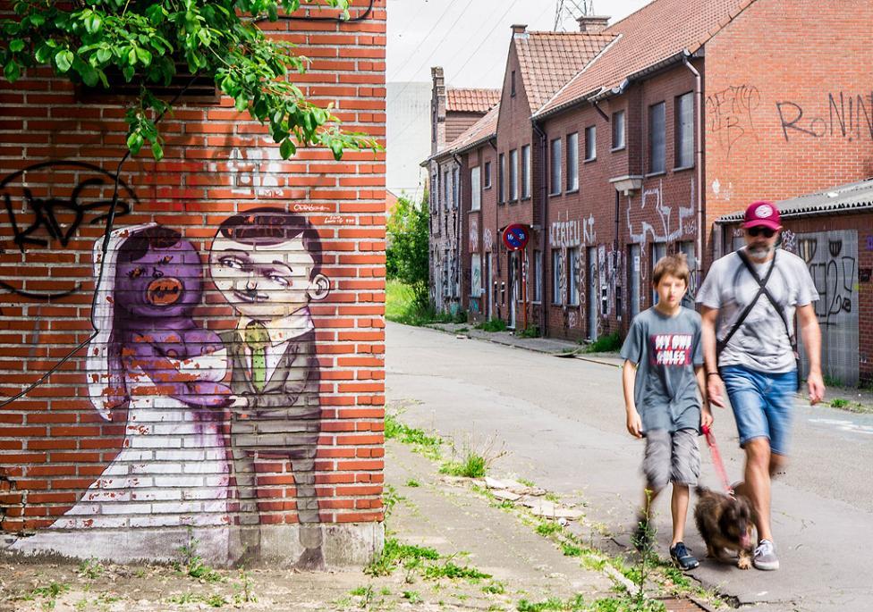 - Доел е 700-годишно село, северозападно от Антверпен, в съседство със селището се намира първата частна атомна електроцентрала в Белгия