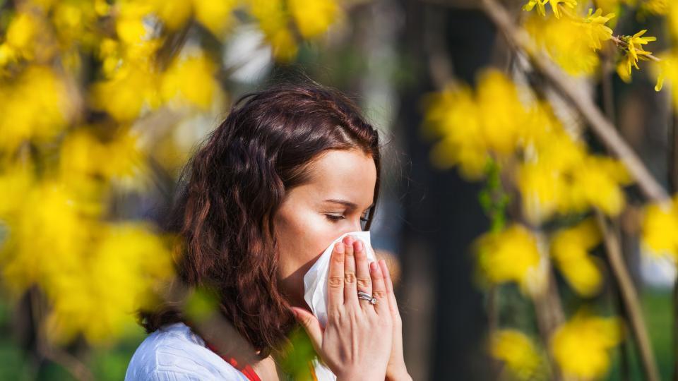Светът е прекрасен, но... алергията ни дебне отвсякъде