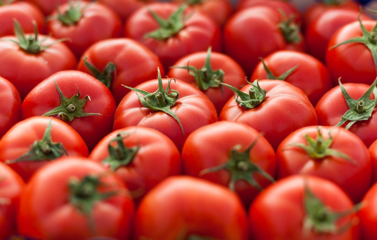 Да, говорим за Негово величество домата: един от най-консумираните зеленчуци в света. Първата рецепта с него идва от Неапол и е от 17 век.
