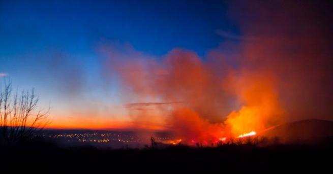 Пожаргори в житен масив край Пловдив между кварталите Прослав и