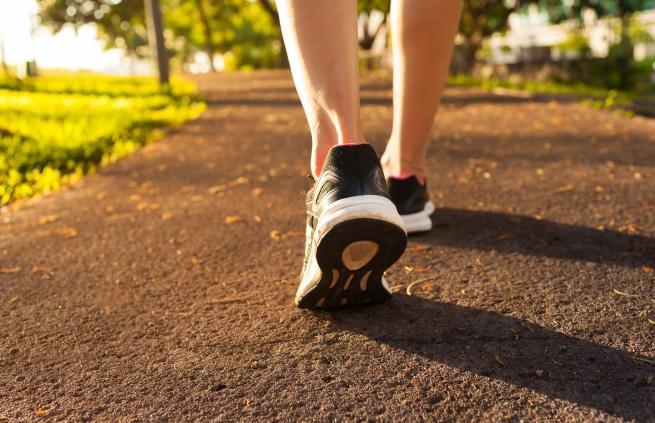 ходене пеша ползи тяло