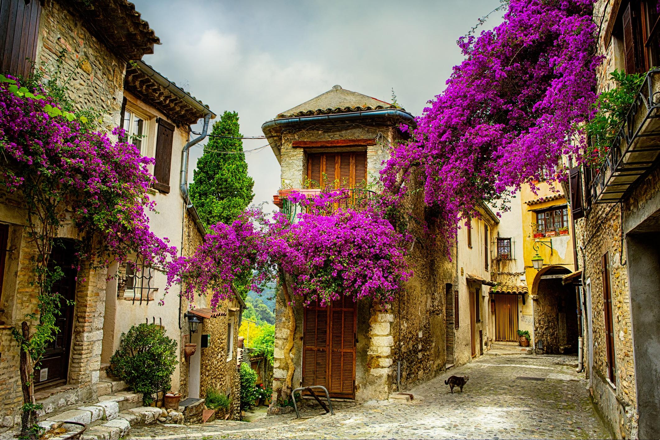 Прованс, Франция<br /> <br /> Със своите тесни улички, огромни лозя и гледки към Алпите, Прованс е идеалното място да се откъснете от хаоса на ежедневието, без да пътувате твърде далече от цивилизацията. Обграден от Средиземно море, този югоизточен френски регион е успокояващ и изключително красив.