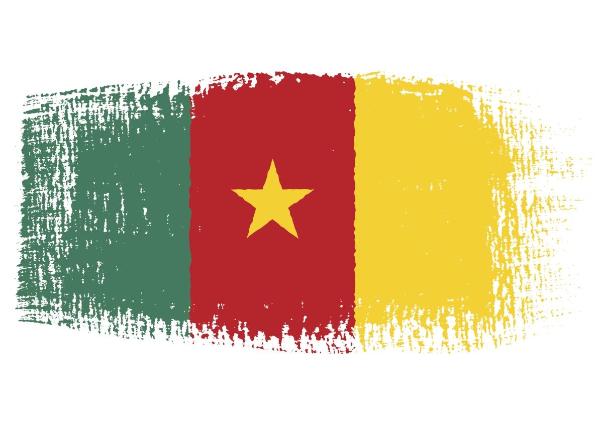 """Камерун означава """"Реката на скаридите"""". Това название е дадено от португалските мореплаватели, след като описват река Вури като река на скаридите - """"Рио дош Камароеш""""."""
