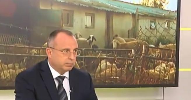 Компенсациите за собствениците на животните в засегнатите от чума райони