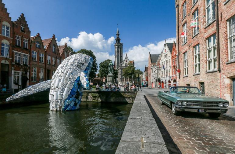 кит брюж пластмаса отпадъци замърсяване