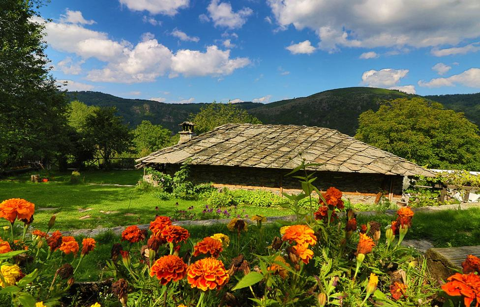 - Село Ковачевица се намира в планински район, в Западните Родопи. На около 24 километра е град Гоце Делчев, а най-близкото населено място до...