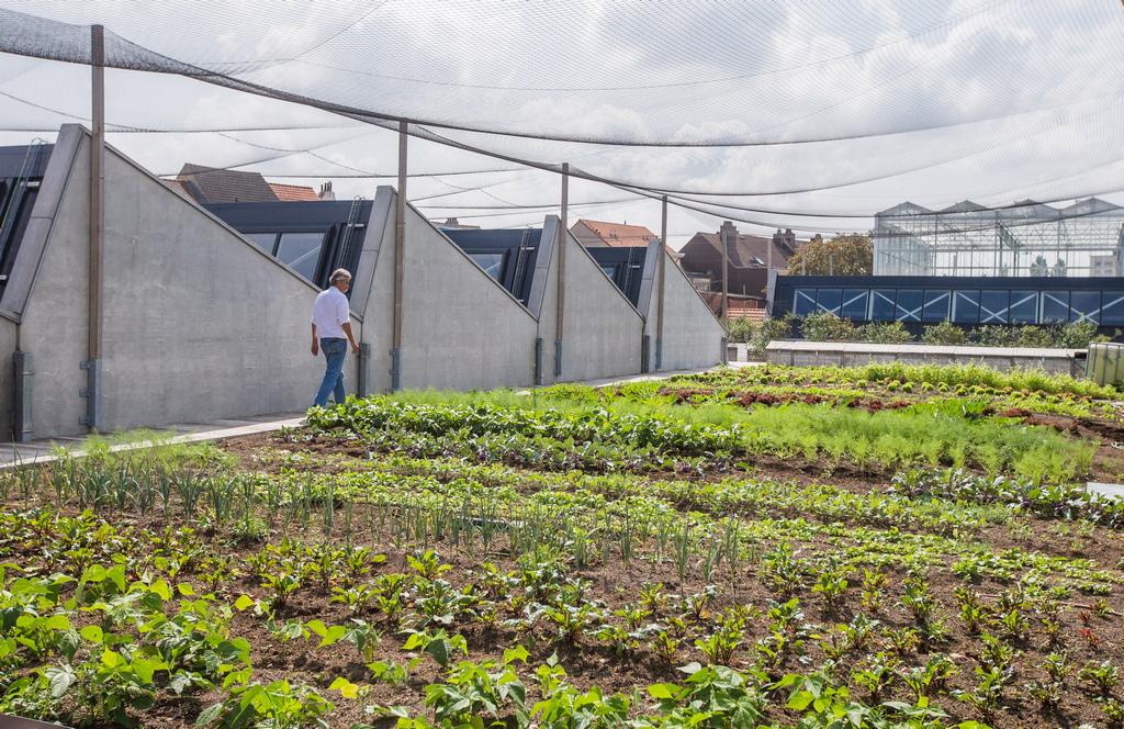 """""""Градската ферма"""" - изграждането на интегрирани зелени къщи (BIGH), в района Андерлехт в Брюксел, Белгия. Стопанство на покрива на бивша кланица и пазар на едро е най-голямата ферма в Европа, като покрива общо пространство от 4 000 квадратни метра (m2) с 2000 m2 в оранжерии и още 2000 m2 на открито"""