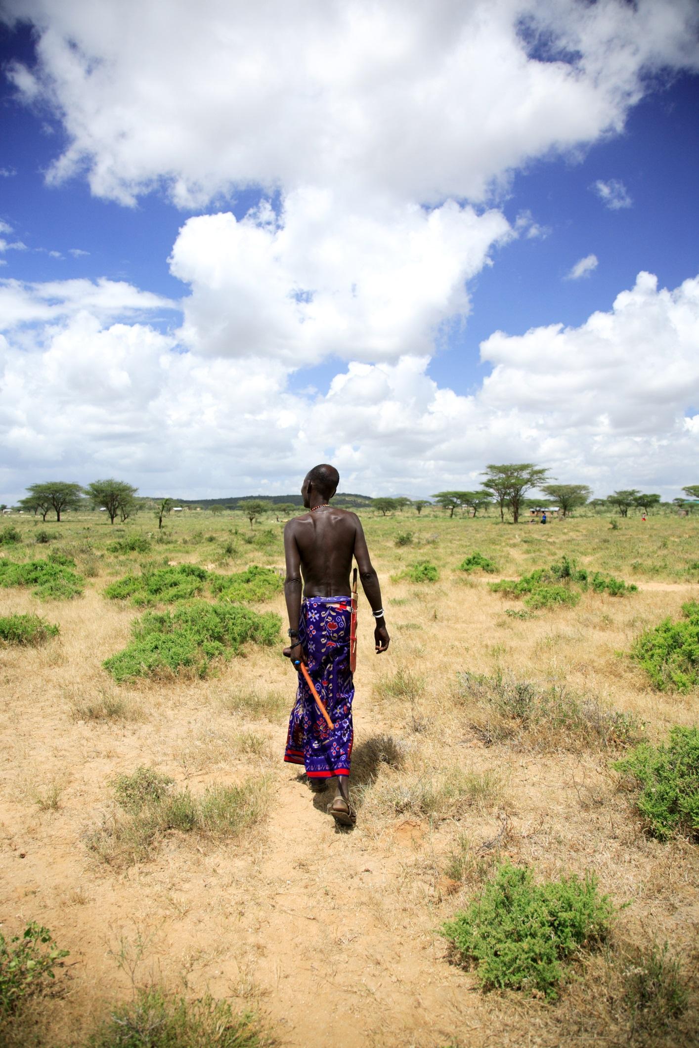 """Освен забележителностите на дивата природа, които привличат повечето посетители в южната част на Кения, Националният резерват Самбуру също е дом на впечатляващата """"втора дивизия"""", която местните водачи наричат """"Специалните пет на Самбуру"""" – Източноафрикански орикс (вид антиопа), мрежест жираф, зебра на Греви, сомалийски щраус и елегантната антилопа Геренук."""