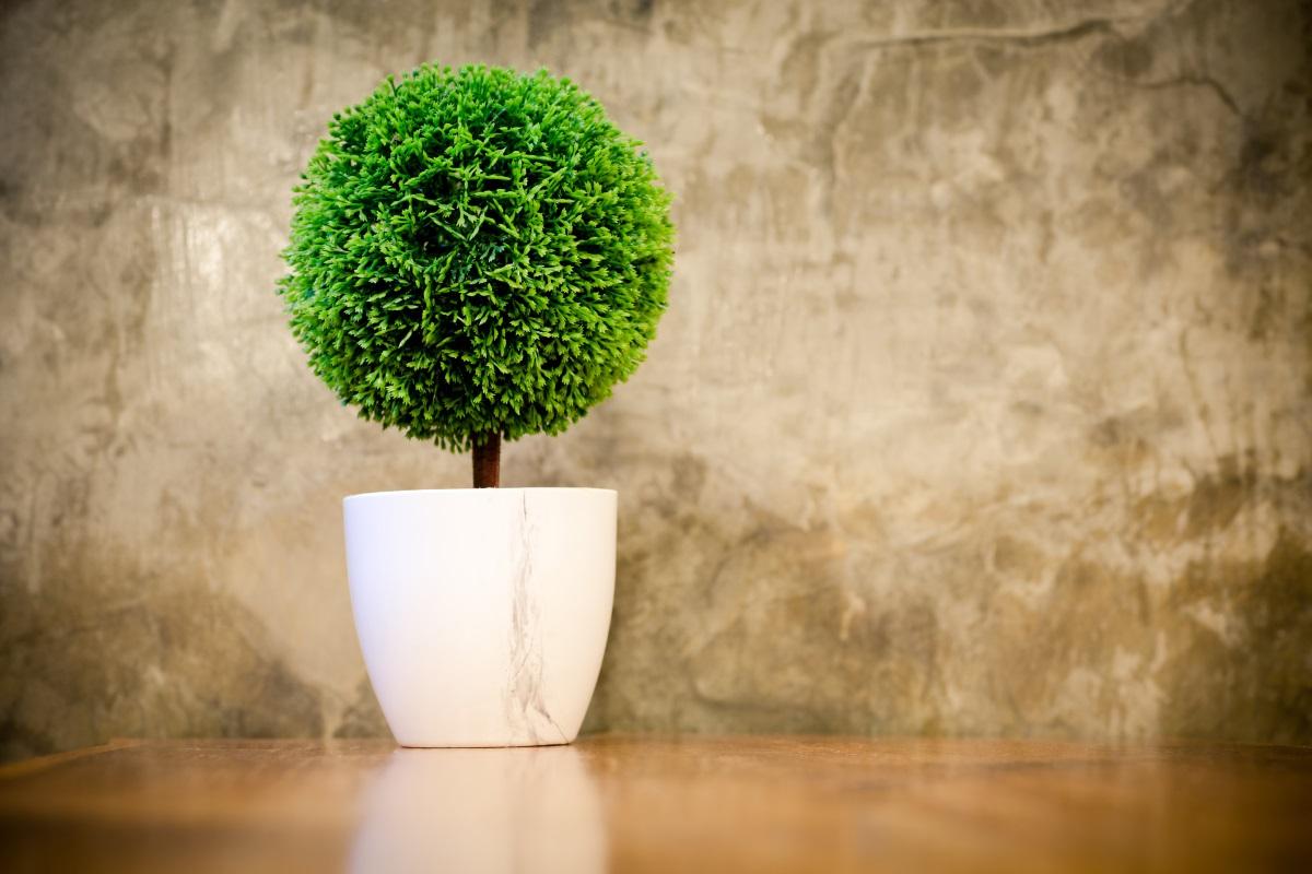 Изкуствени растения - Ще се съгласите, че няма нищо по-комично в интериорните решения от изкуствените цветя и растения.Особено ако ги имате от доста дълго време и те вече са започнали да пожълтяват. На тяхно място винаги можете да сложите нещо свежо. Дори и да не умеете да гледате саксийни растения, винаги когато ходите на разходка, може да съберете паднали клонки и листа и да ги аранжирате ефектно и оригинално. Резултатът ще бъде далеч по-успешен, макар и това да не еобичаен букет.