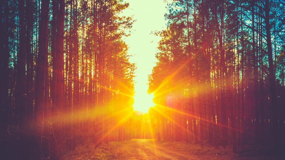 хороскоп гора слънце
