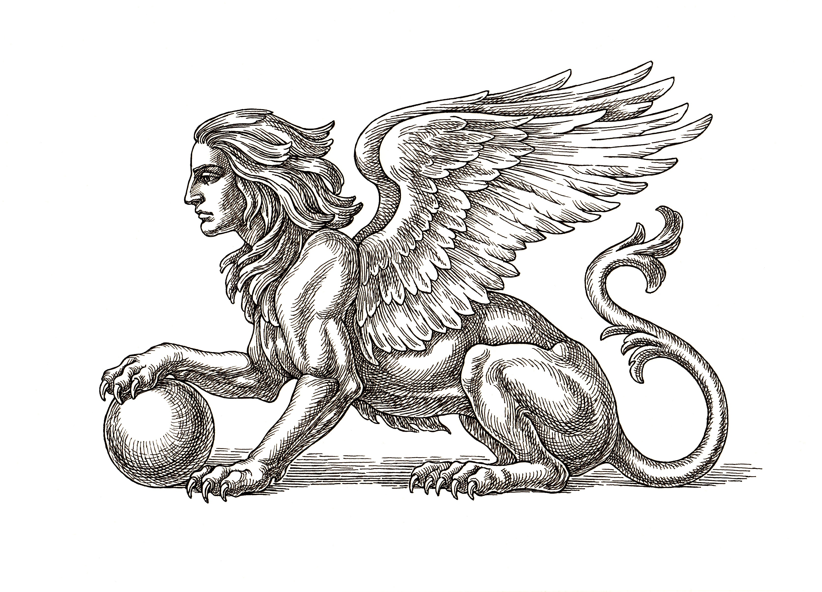 """Но когато гърците приемат идеята за Сфинкса, те ги възприемат като нещо лошо. Добавят им опаашки на змии и криле и вярват, че това са жестоки интелигентни зверове, които обичат да си играят с жертвите си, преди да ги убият и изядат.<br /> <br /> Днес най-известната история за тези митологични същества идва от приказката за Едип. По пътуването си до Тива, Едип бил заговорен от сфинкс, който го питал за известната загадка: """"Какво ходи на четири крака сутрин, два следобед и три вечер?"""". Сфинксът е толкова сигурен, че Едип ще се провали, и че ще успее да го убие, че когато Едип отговаря правилно """"Човек"""", Сфинксът се самоубил от отчаяние."""