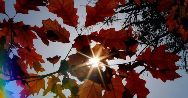 Атмосферното налягане е по-високо от средното за октомври и слабо