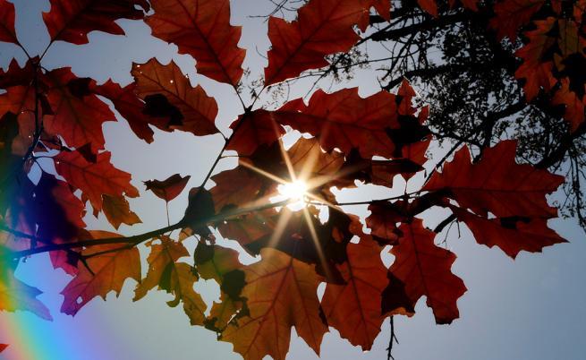 Докога ще продължи топлото есенно време