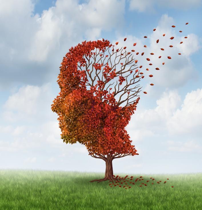 - Изследване в Щатите изследва през кой сезон паметта е най-силна и това, за изненада на всички, се оказва есента. Донякъде учените си обясняват това с...