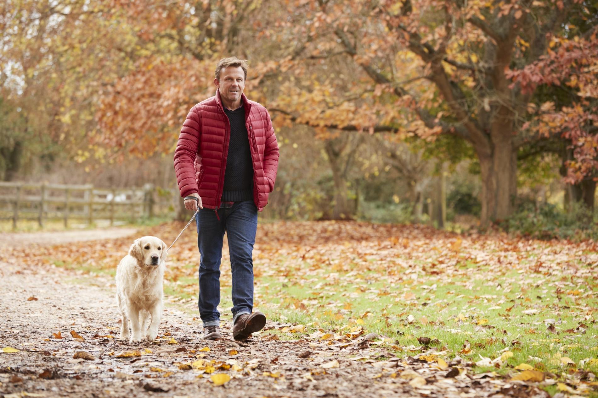 Едва ли ще ви шокираме като кажем, че мъжете с кучета са сред най-предпочитаните партньори. Защо? Ами, кучето е един дългосрочен ангажимент и дамите виждат, че това е човек, който може да поема отговорности.