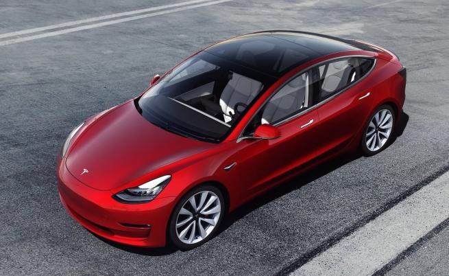 Tesla Model 3 подмина кота 100 000