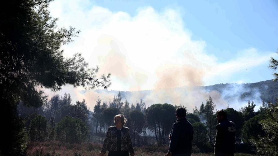 Огромният пожар край Ситония продължава