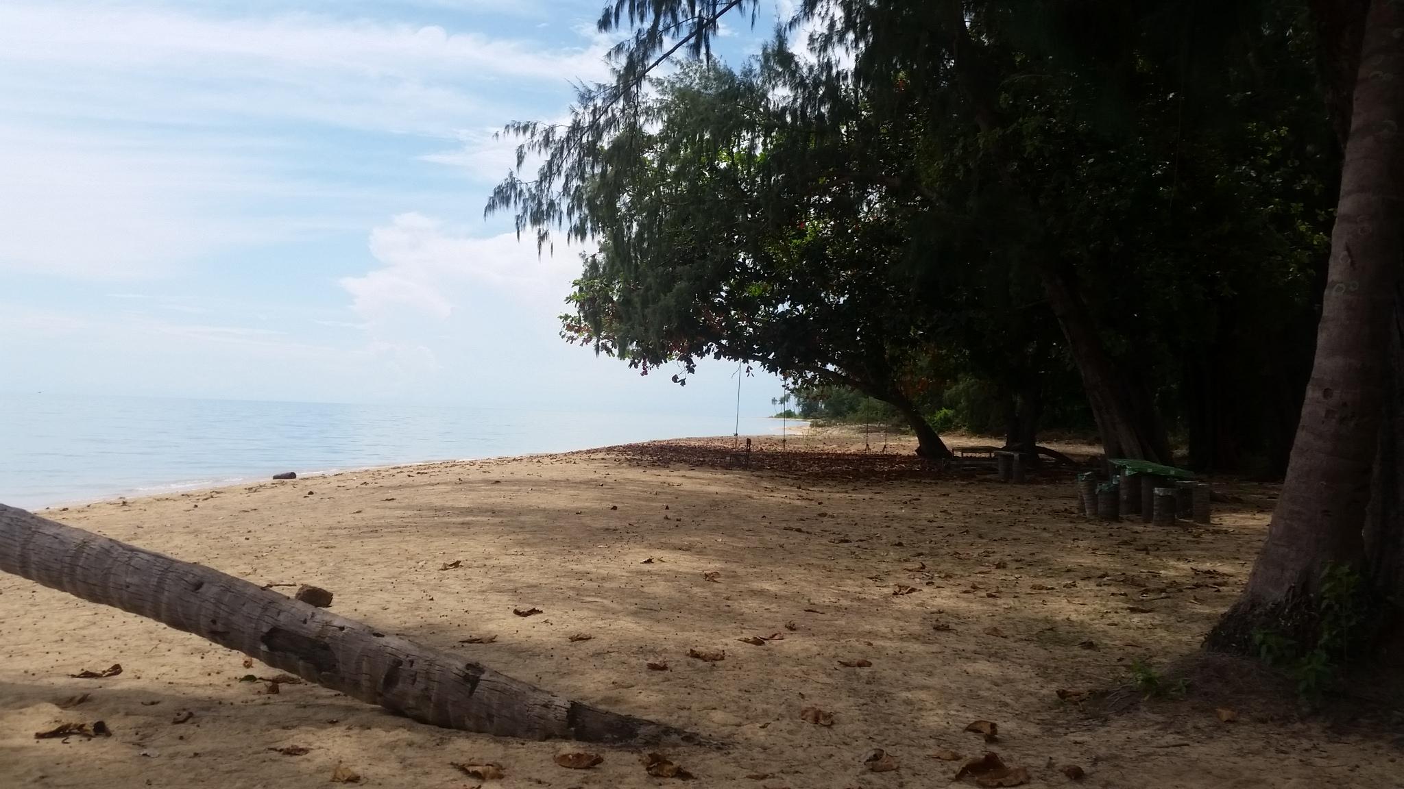 Ко Чанг е третият по големина остров в Тайланд след Пукет и Самуи. Намира се на около 300 км от Банкок и е близо до границата с Камбоджа.  Много туристи го посещават именно на път към Камбоджа, но за тях скрити остават малките диви острови, част от архипелага. Как собственици на един от тях го спасяват и кои са Героите на боклука, разберете от репортажа на Vesti.bg.