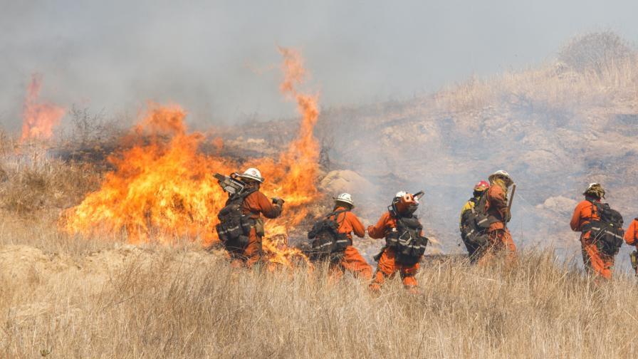 <p>Огненият ад в Калифорния – 63 жертви и 600 изчезнали</p>