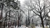 Нови валежи до сряда и студ, има ли затворени пътища