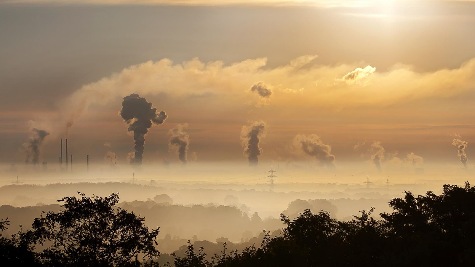 Учени: Мръсният въздух съкращава живота с 2 години