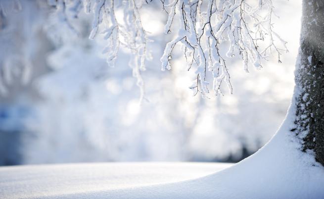 """Ако зимата продължи като в """"Игра на тронове"""""""